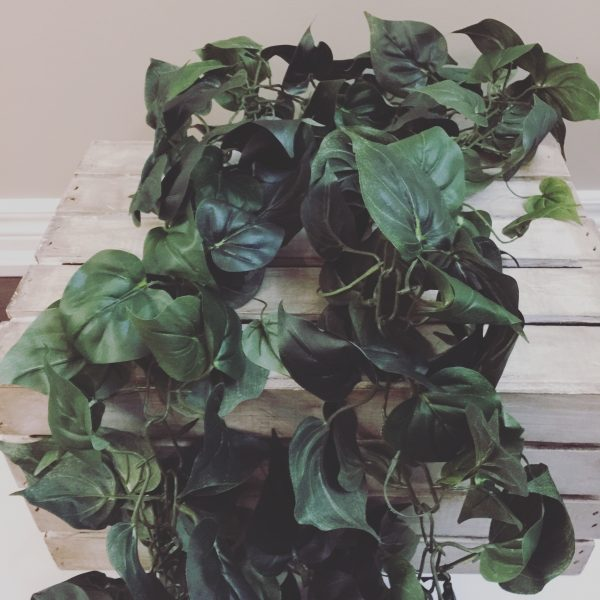 Greenery Garland For Rent