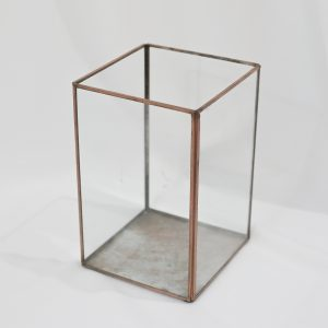 Gold Terrarium Display Box