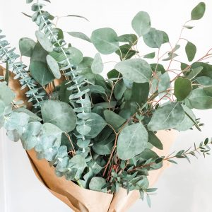 Fresh Eucalyptus Bouquet